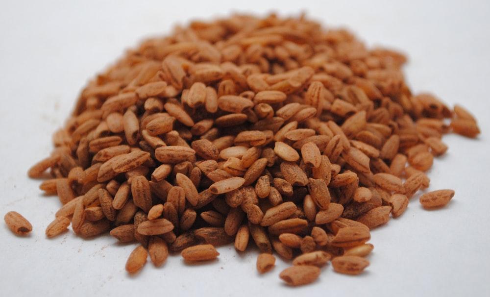 brown peanuts on white ceramic plate