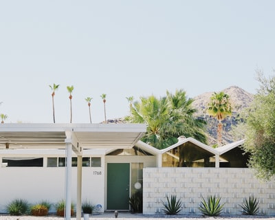 white and brown house near green trees under white sky during daytime midcentury modern teams background