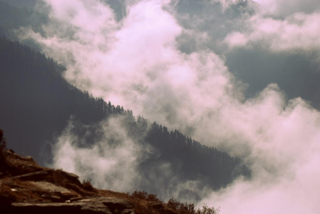Carpet of the cloud.