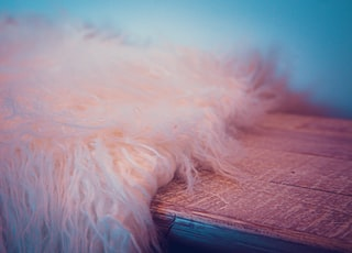 white fur textile on brown wooden table