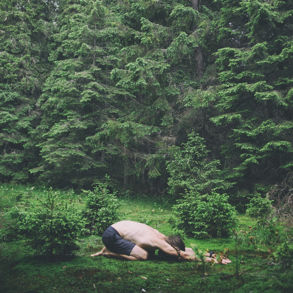 person lying on brown rock in the middle of green trees