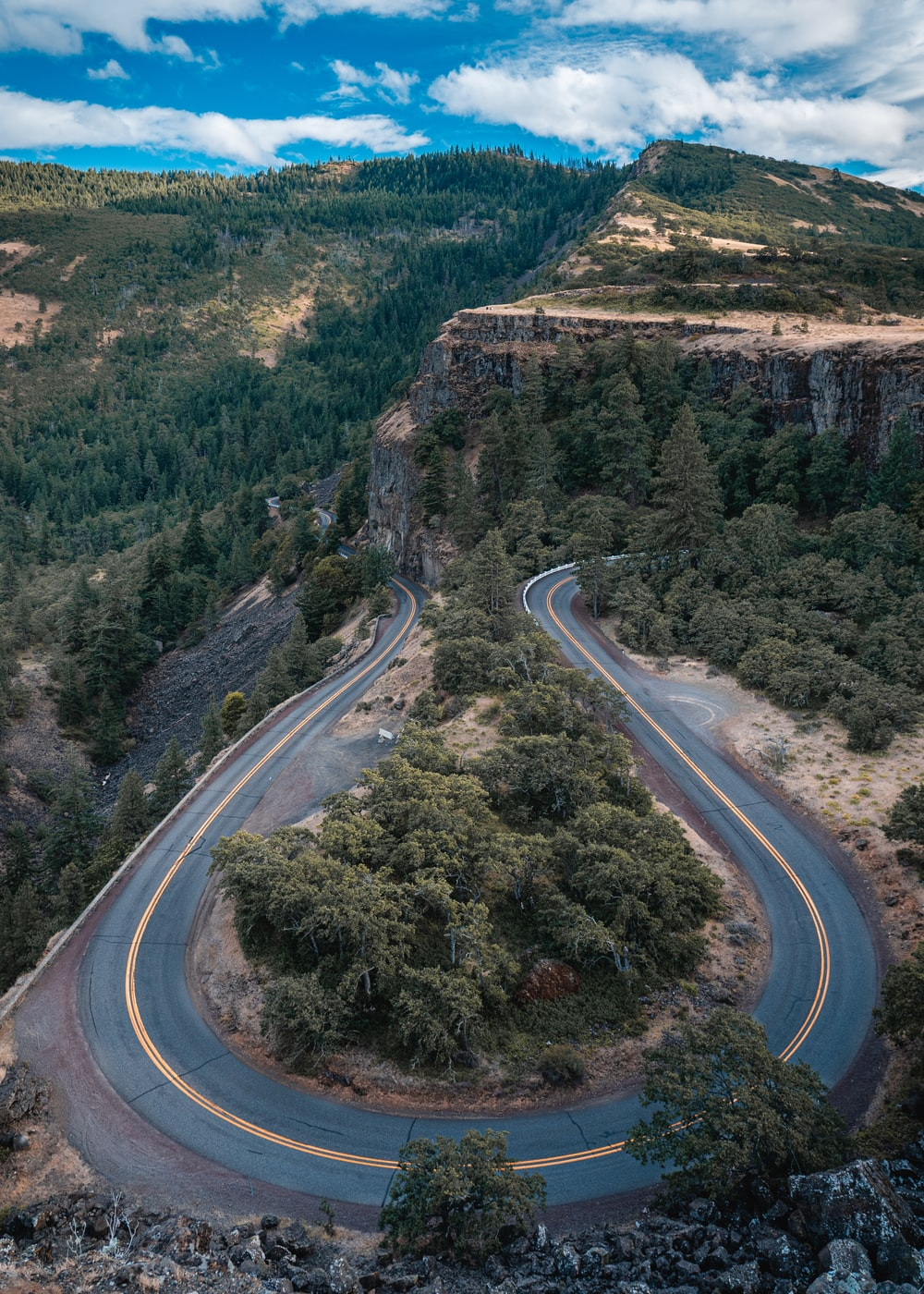 aerial view of road between trees during daytime