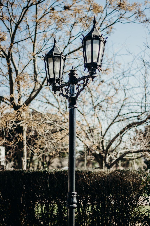 black street light near trees during daytime