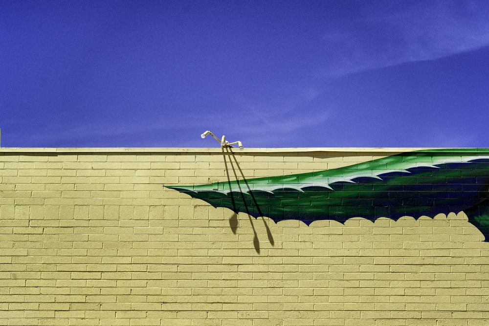 green and white boat on brown concrete wall during daytime