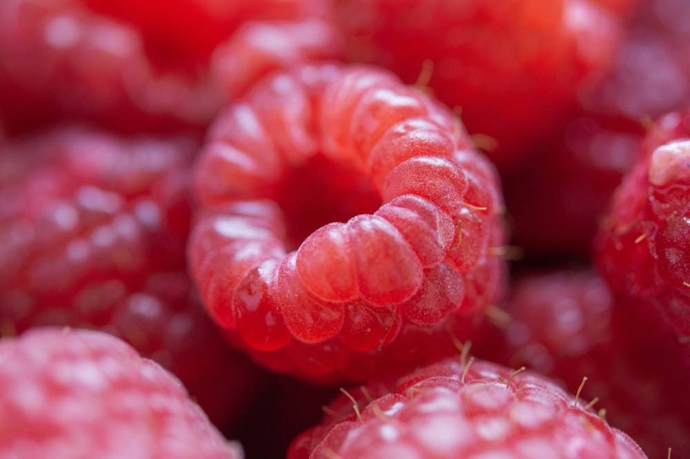 red round fruits in close up photography