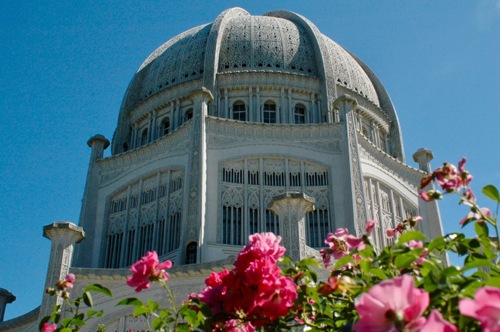 pink flowers in front of white dome building