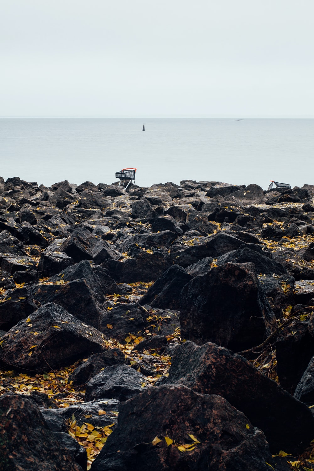 person standing on rocky shore during daytime