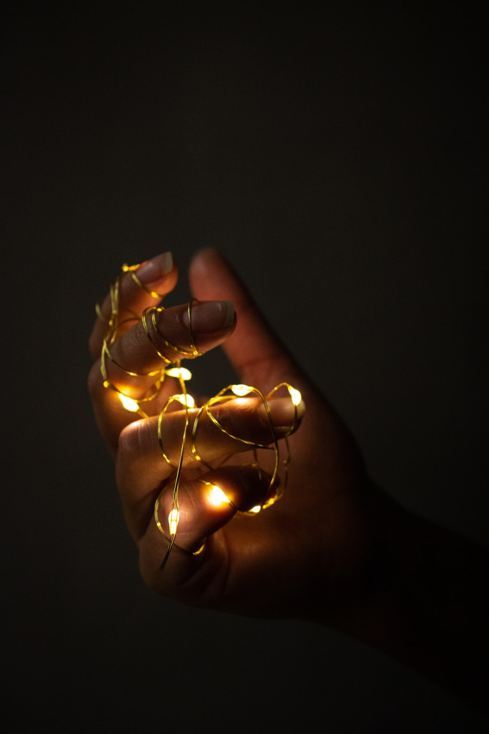 person holding gold string lights