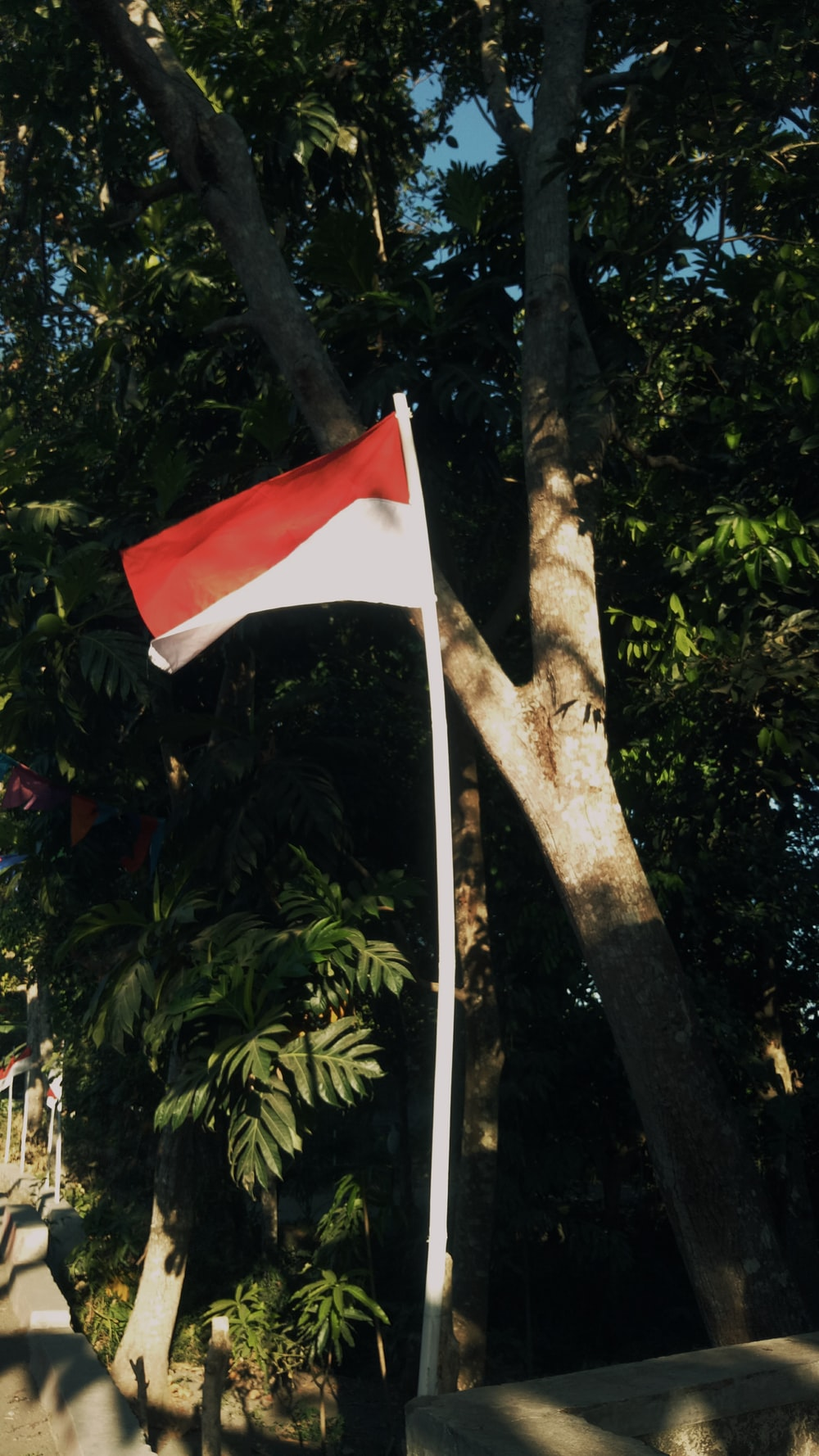 red and white flag on brown tree