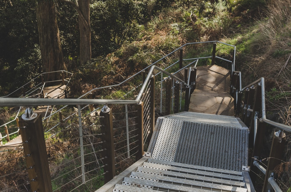 gray concrete staircase surrounded by trees
