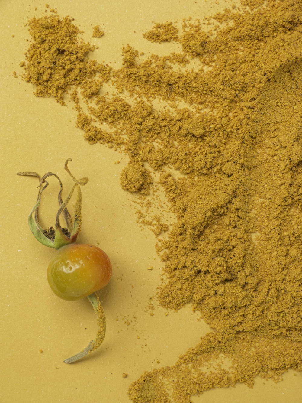 orange tomato on brown sand