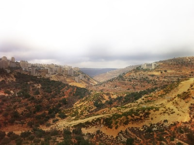 green and brown mountains under white sky during daytime palestine zoom background