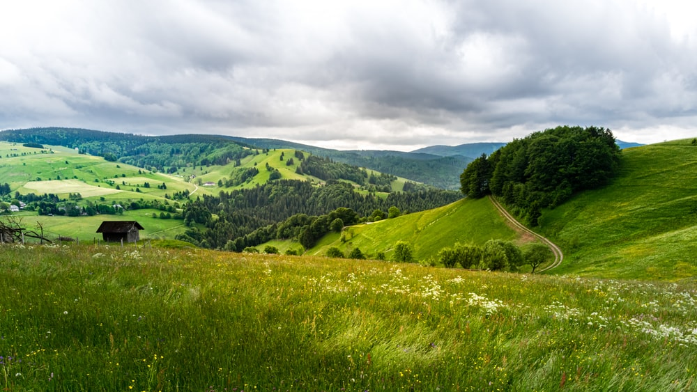 green grass field and green mountains under white clouds and blue sky during daytime