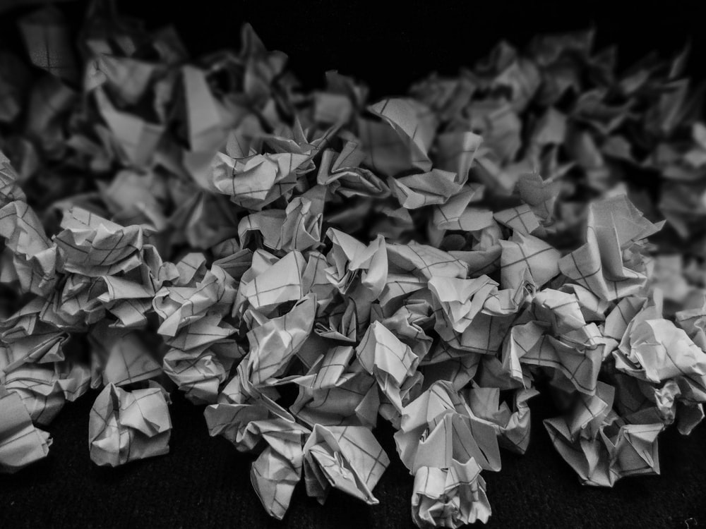 grayscale photo of dried leaves