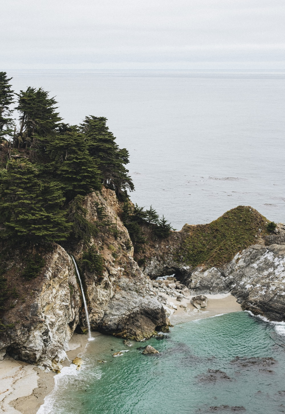 green trees on brown rock formation beside sea during daytime