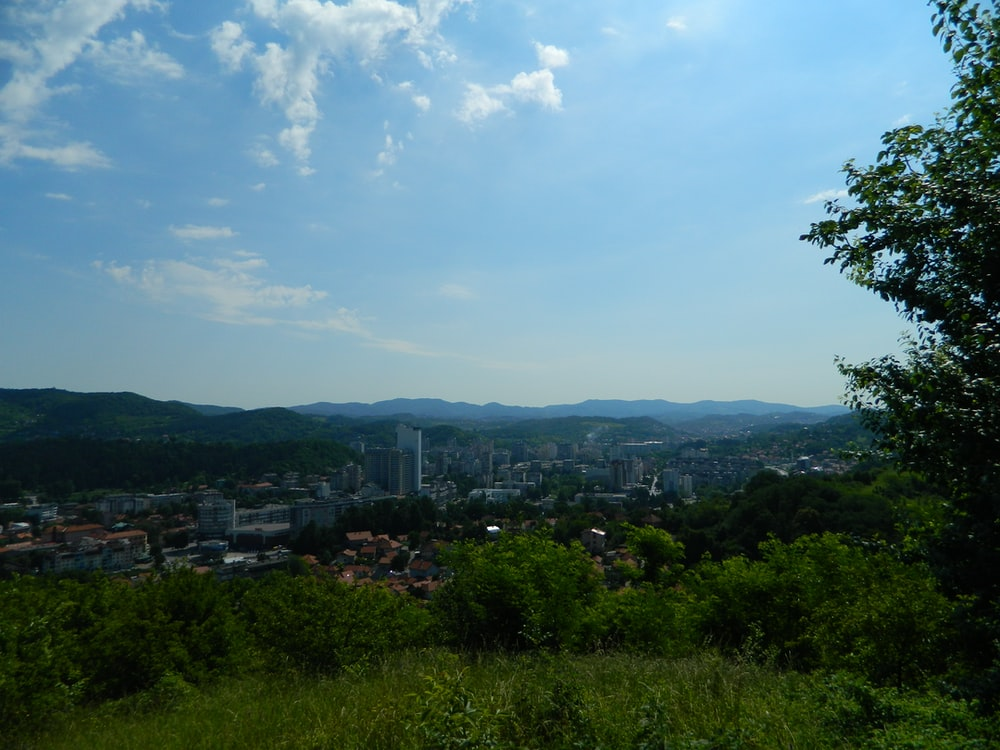 green trees and city buildings under blue sky and white clouds during daytime