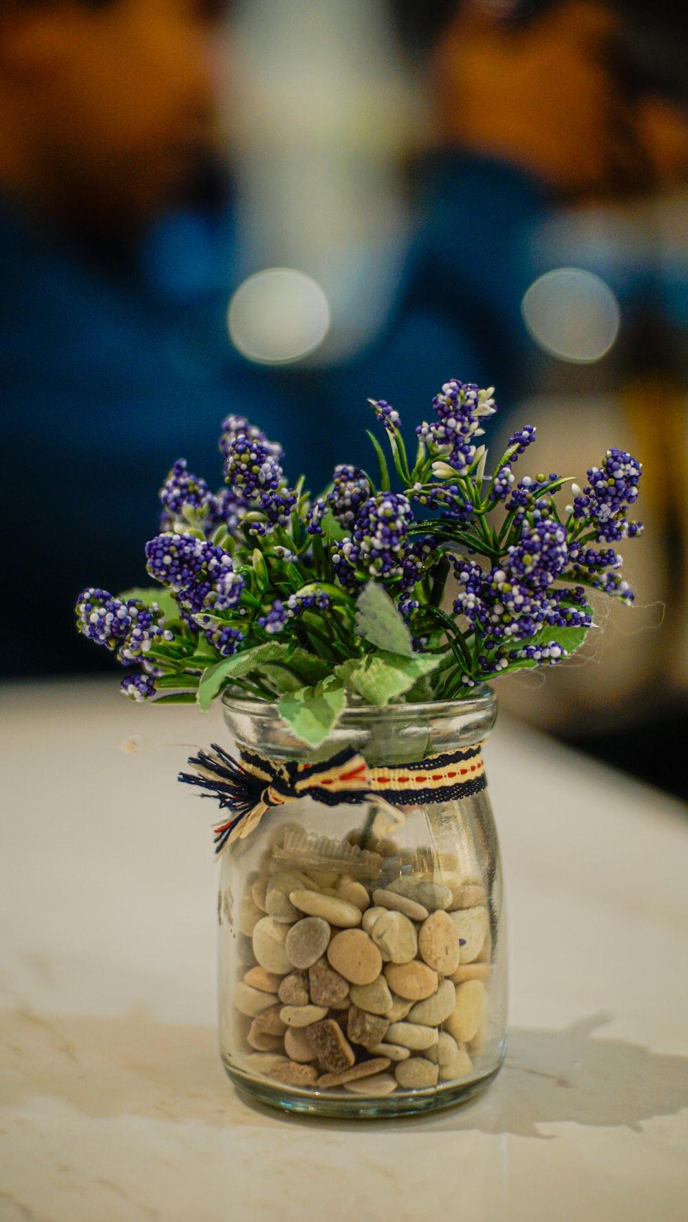purple flowers in clear glass jar