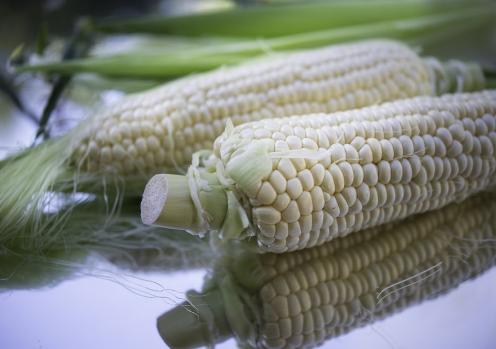 corn on green plastic pack