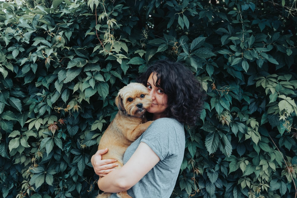 woman in gray t-shirt holding brown short coated dog
