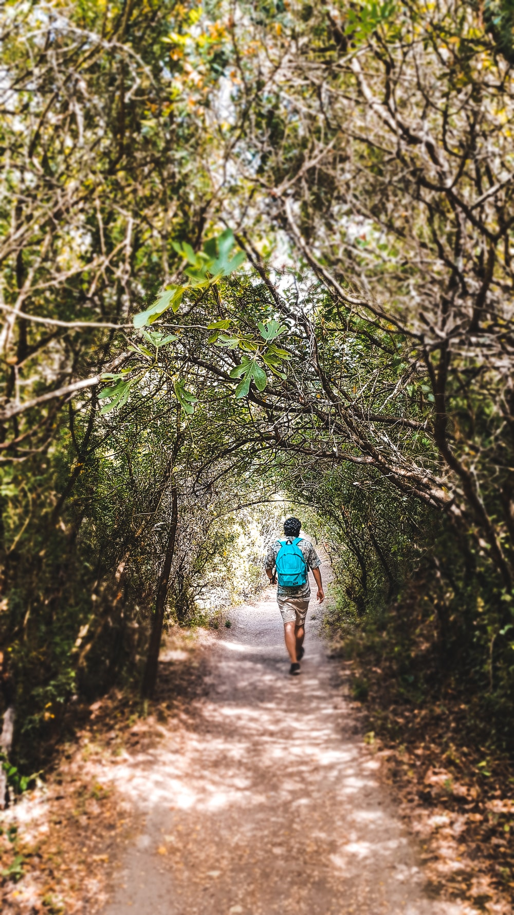 man in blue shirt walking on dirt road in the middle of trees during daytime
