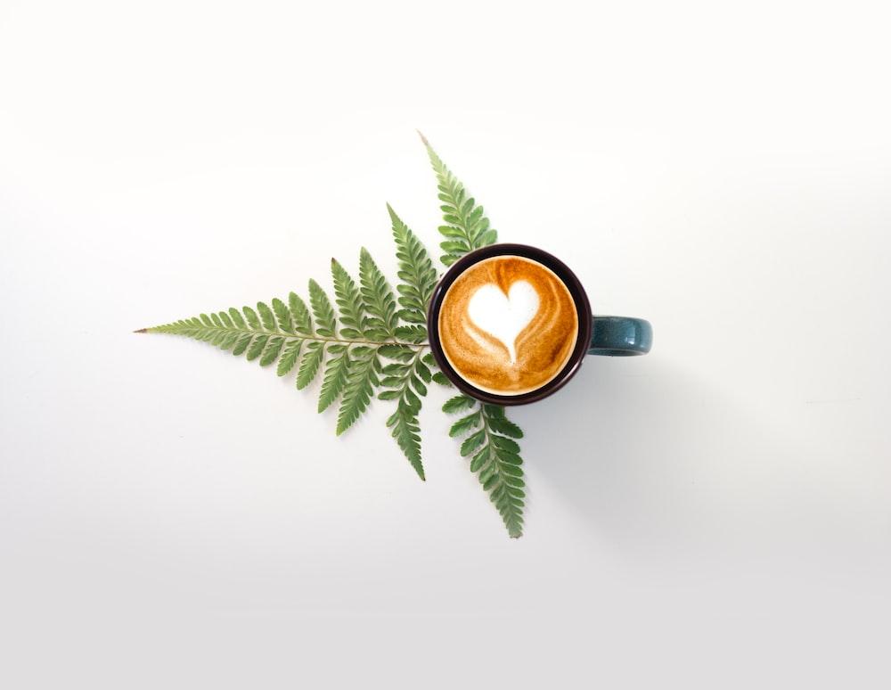 green leaves beside brown ceramic mug with brown liquid