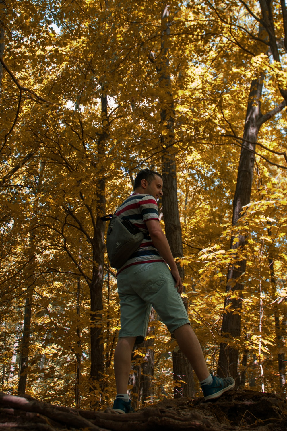 man in black and blue backpack standing in forest during daytime