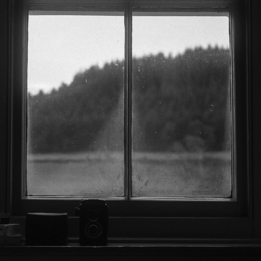 grayscale photo of window with a view of trees
