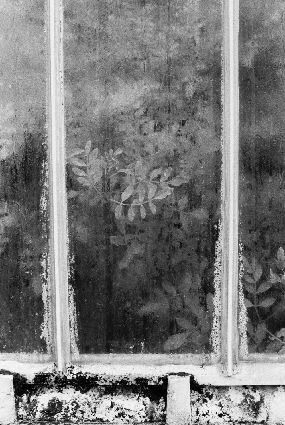 grayscale photo of floral glass window