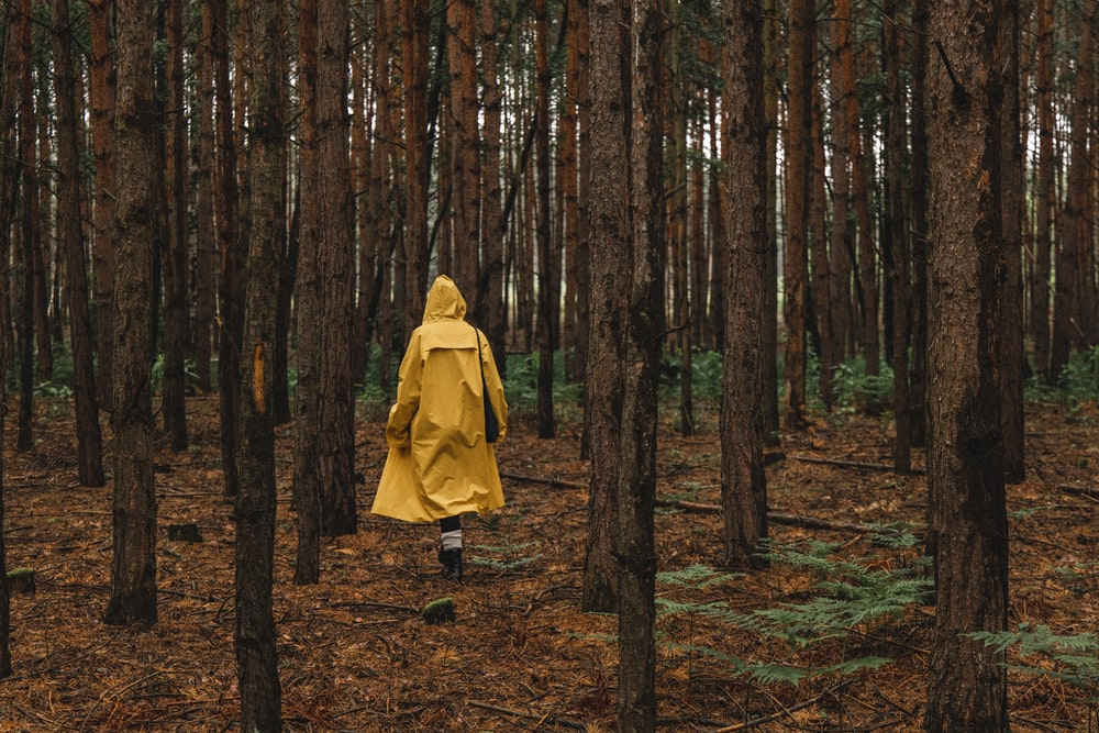 woman in yellow coat walking on forest during daytime