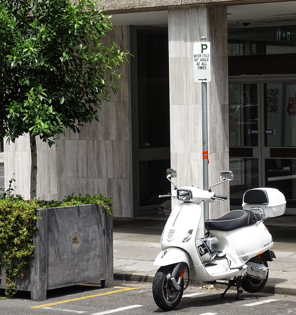 white motor scooter parked beside green tree during daytime