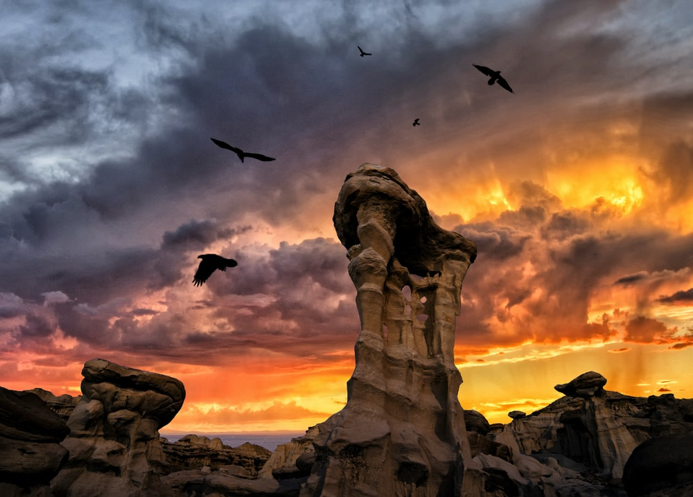 birds flying over brown rock formation during sunset