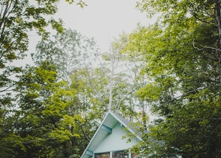 white wooden house surrounded by green trees during daytime