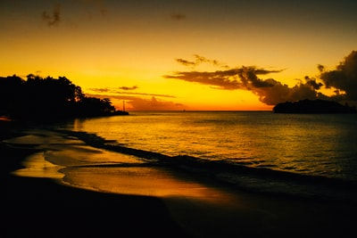 silhouette of trees near body of water during sunset st. lucia teams background