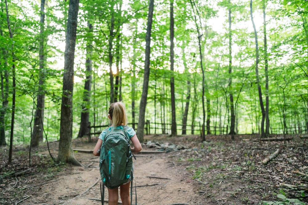 woman in green backpack walking on forest during daytime