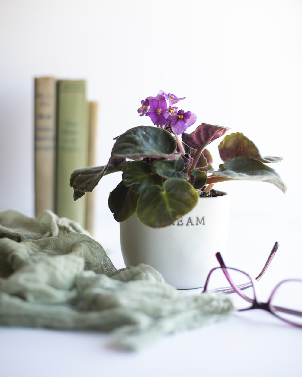 purple and white flowers in white ceramic vase