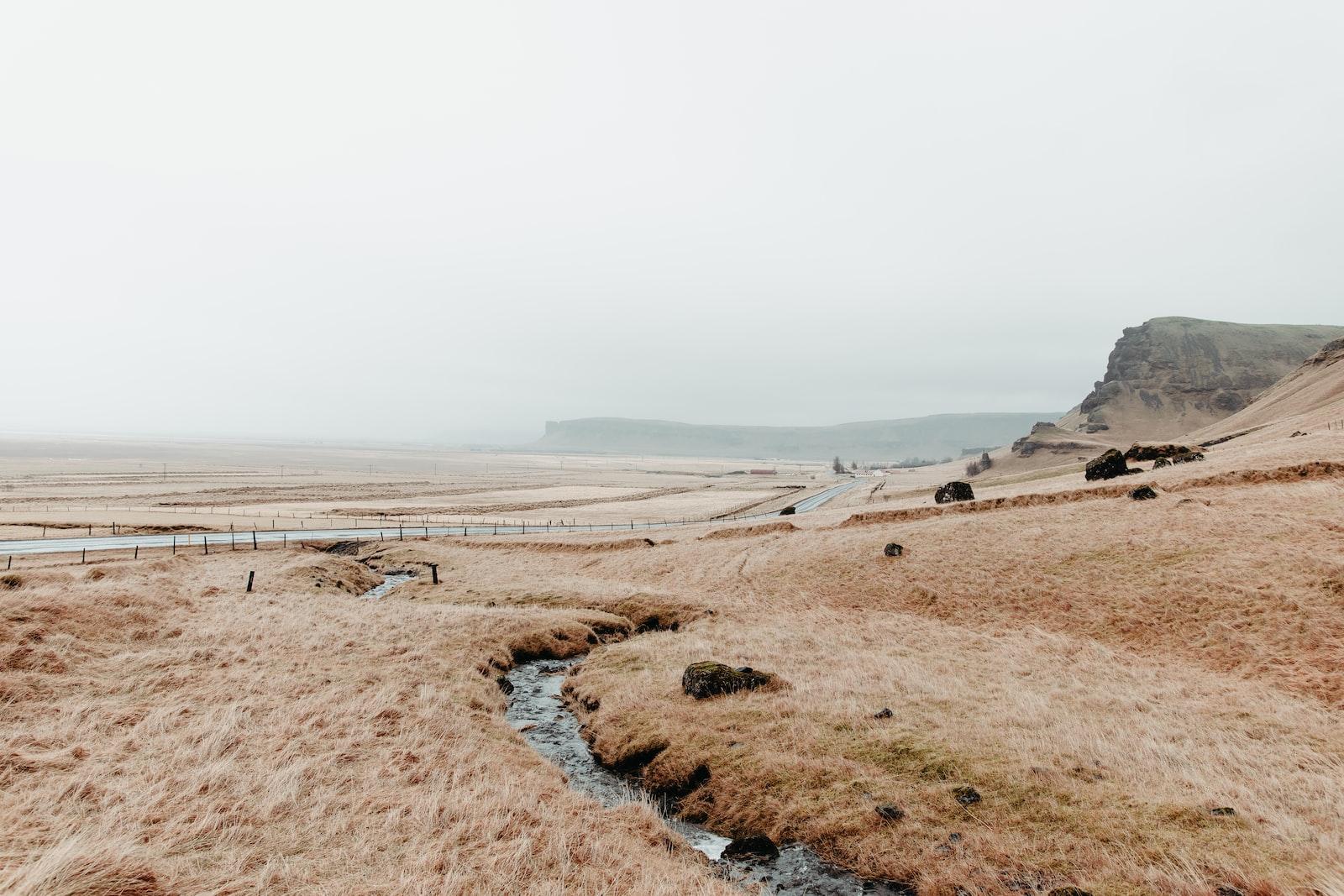 "Nikon D7500 sample photo. ""Brown sand near body"" photography"