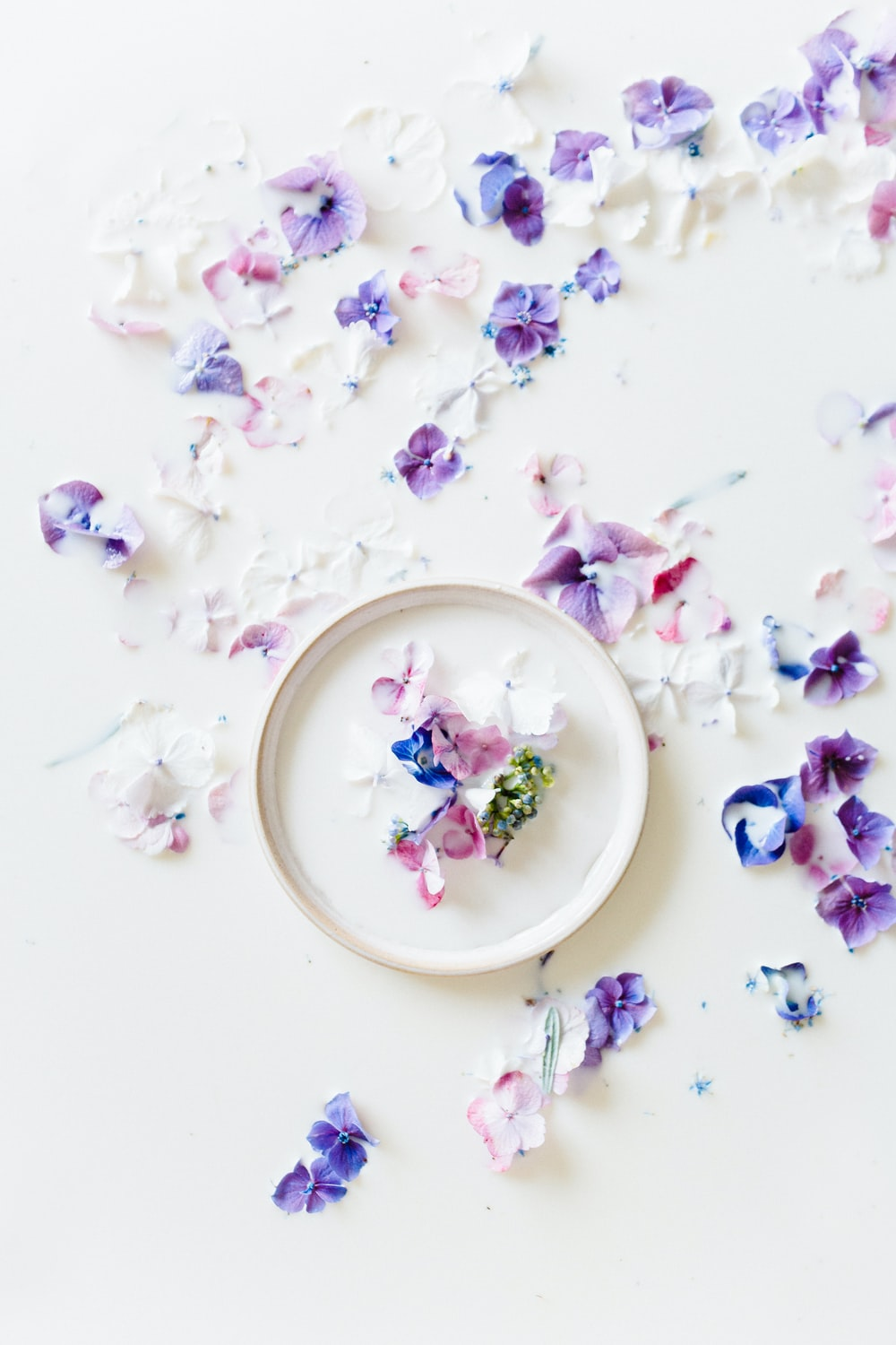 white and purple floral ceramic plate