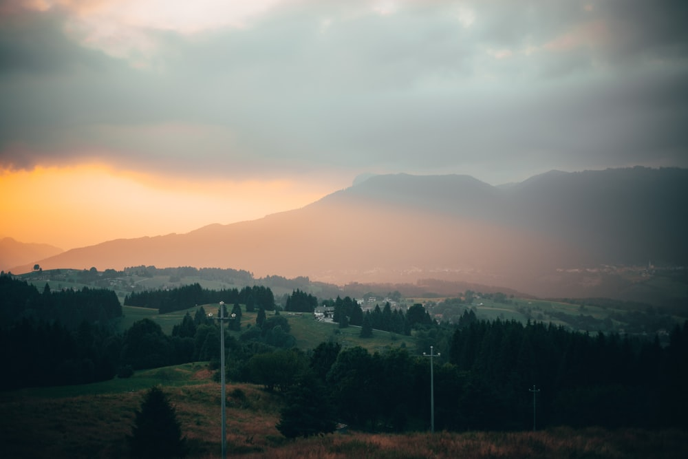 green trees and mountains during sunset