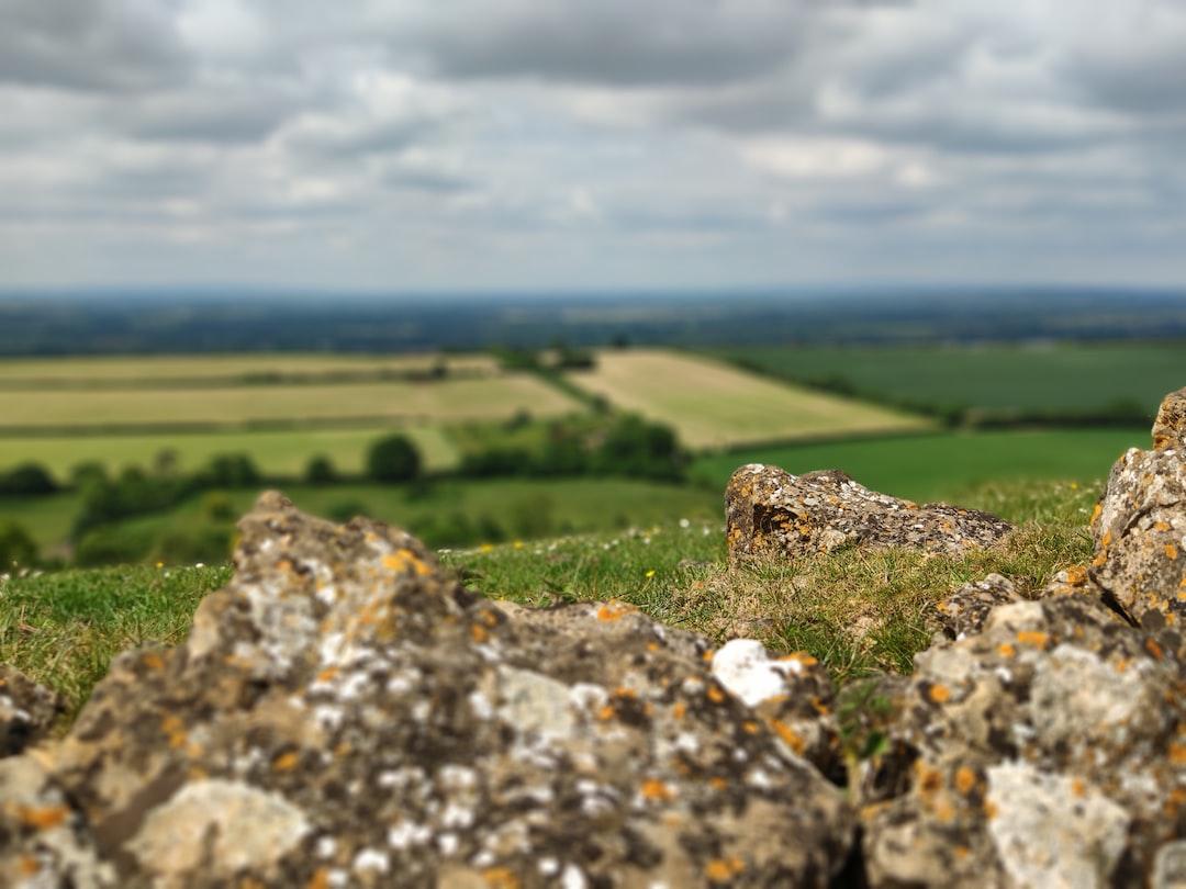 Dry stone wall on Corton Denham Ridge, UK.