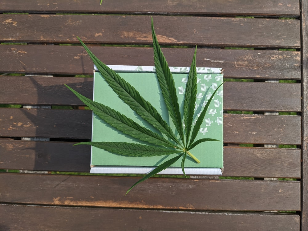 green and white book on brown wooden surface