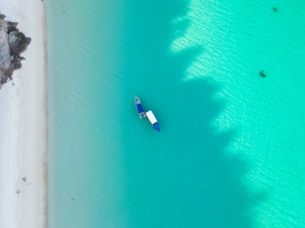 white and blue boat on blue water