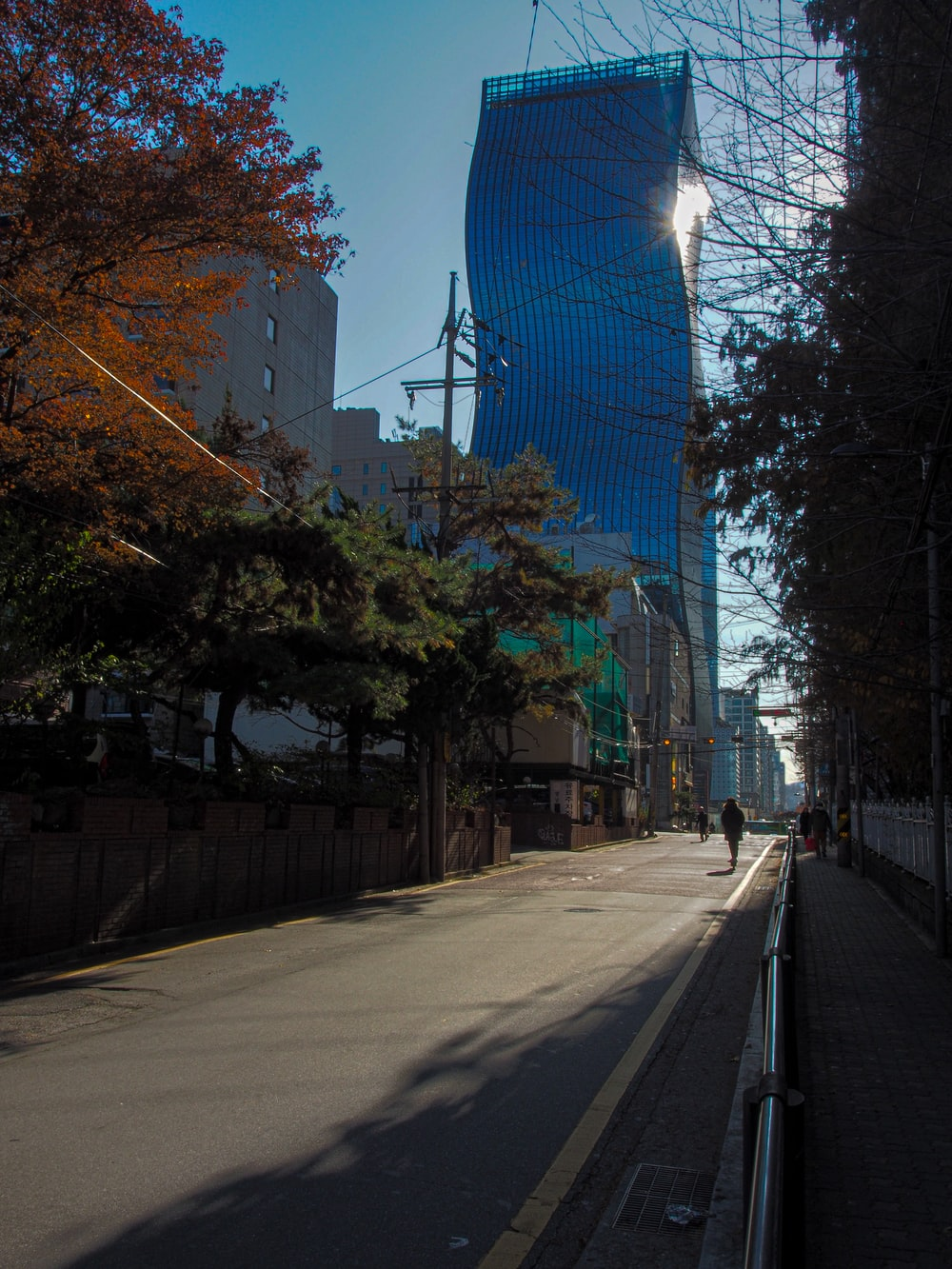 gray concrete road between trees and buildings during daytime