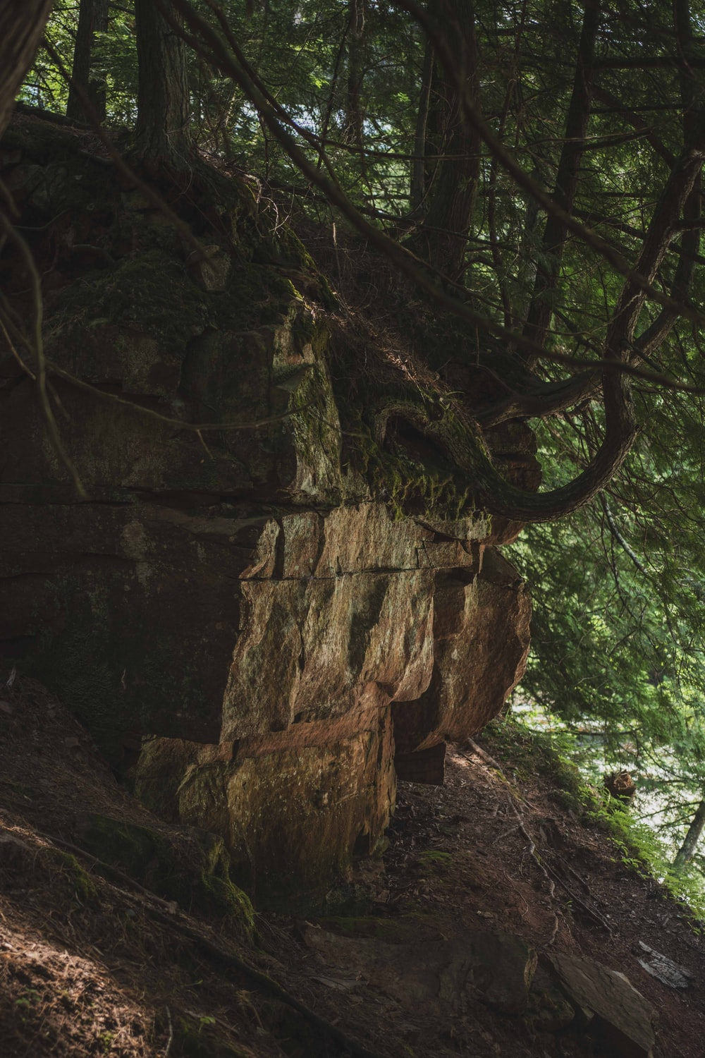 brown rock formation with green moss