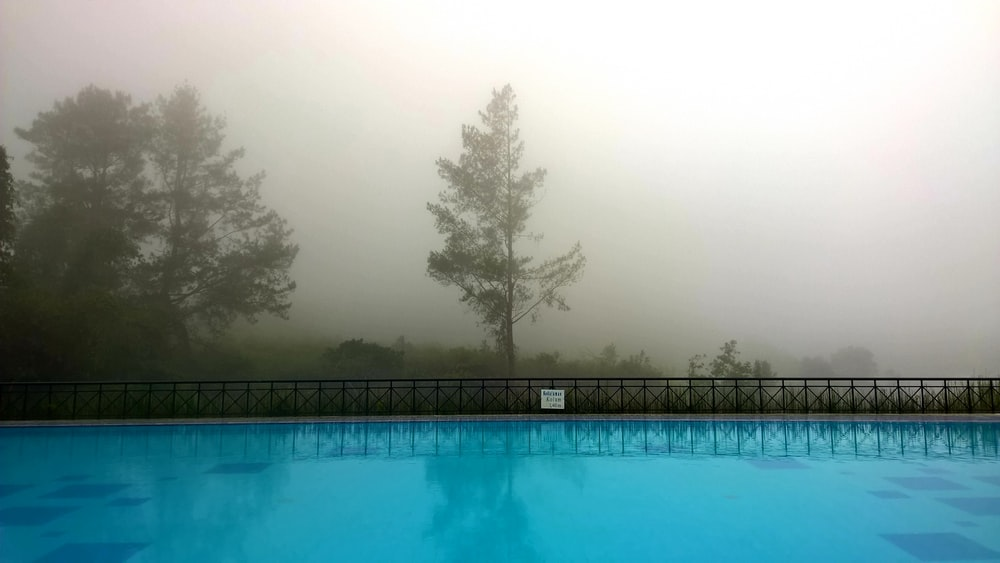 blue swimming pool with trees in the distance