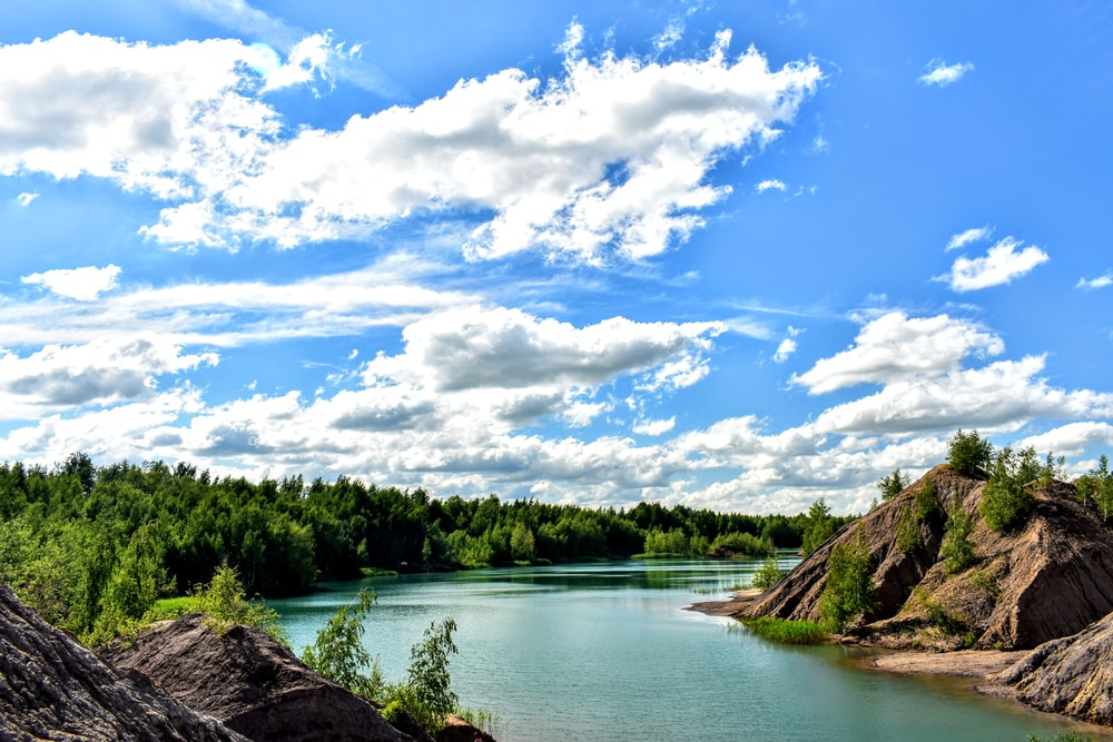 green trees beside river under blue sky and white clouds during daytime