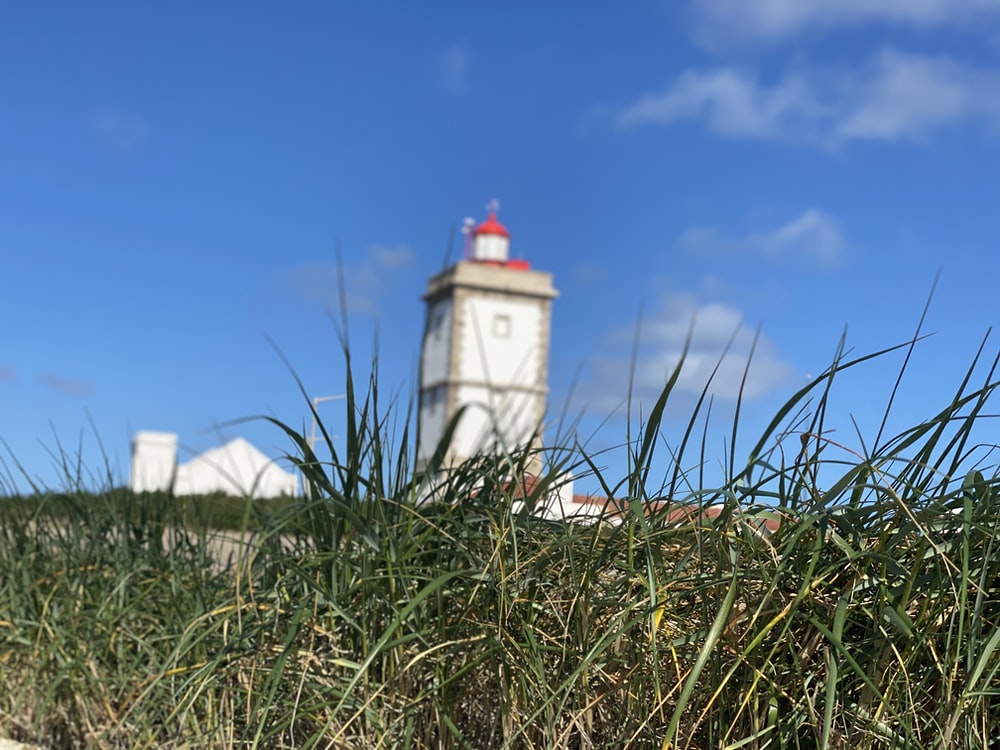 white and red lighthouse under blue sky during daytime