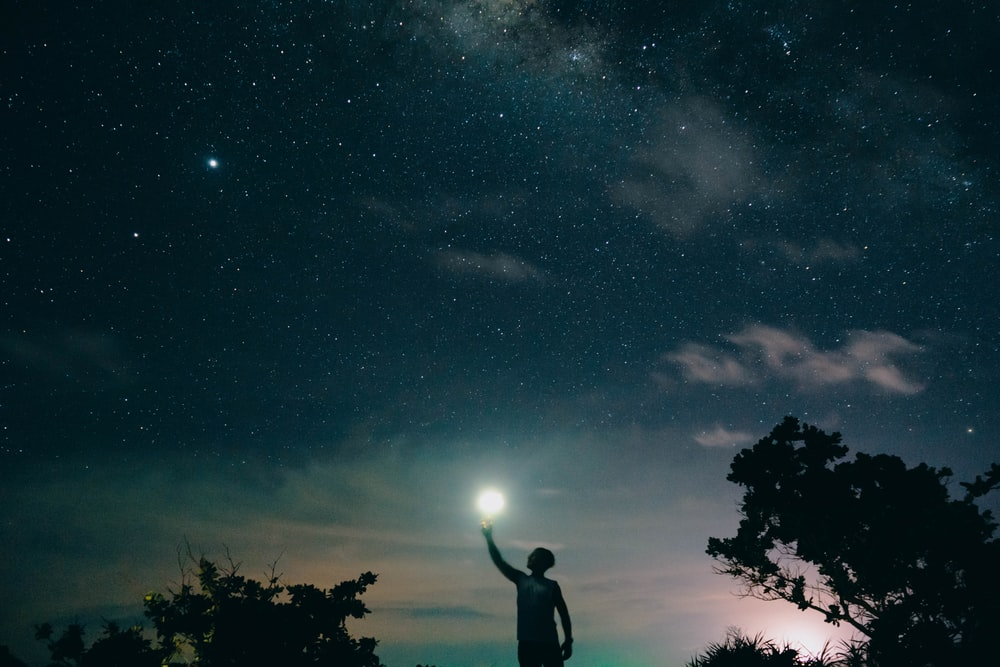 man in black tank top standing near tree under starry night