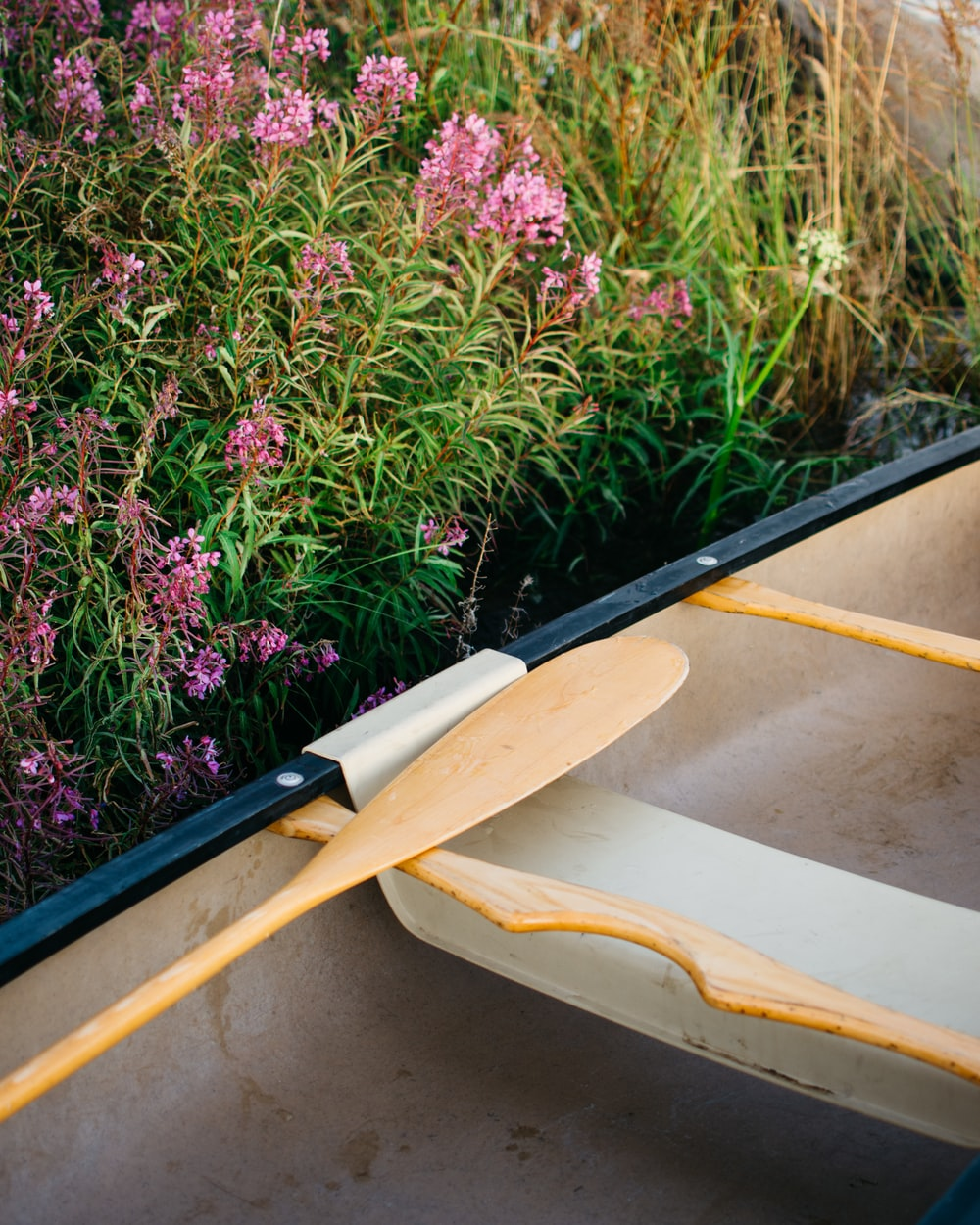 brown wooden boat on green and purple plants