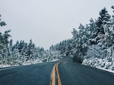 gray asphalt road between snow covered trees during daytime glacier national park zoom background
