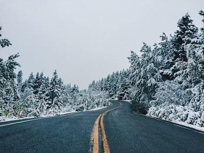 gray asphalt road between snow covered trees during daytime glacier national park teams background